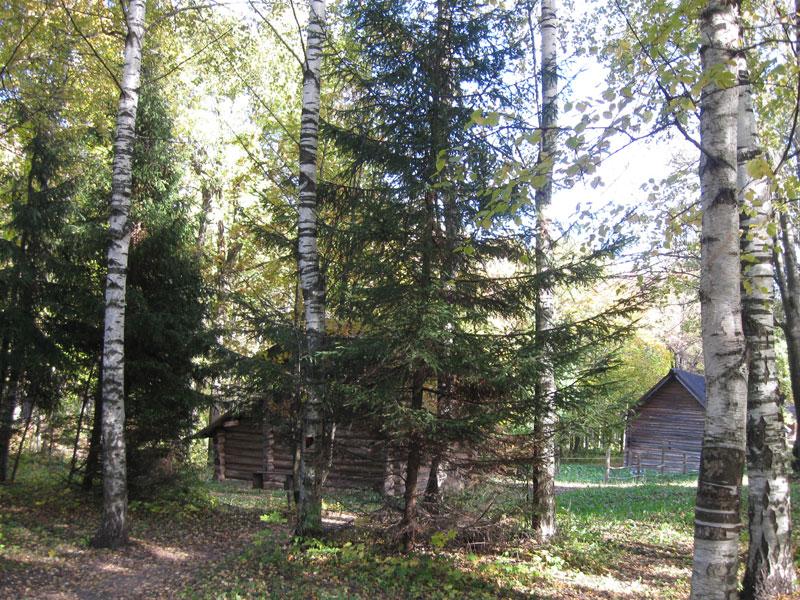 Щелоковский хутор и Марьина роща